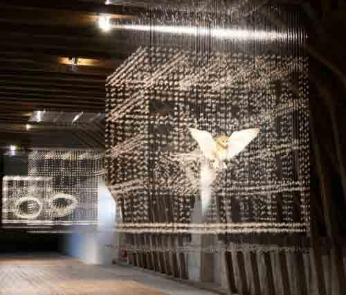 Невесомые инсталляции Клер Морган 8
