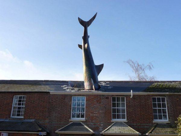 Хедингтонская акула