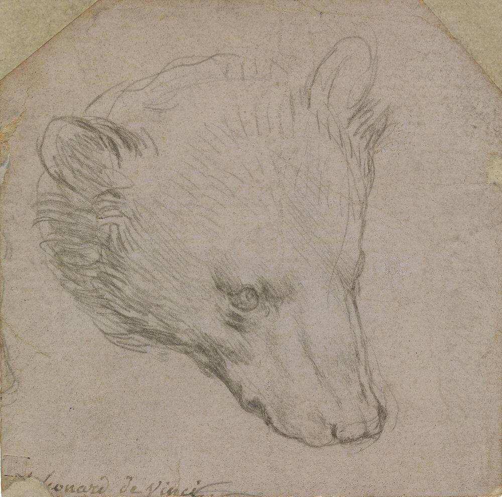 Продажа известного рисунка Леонардо Да Винчи